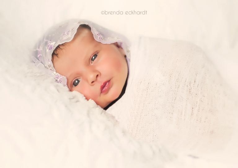 Madison newborn photography madison photographer brenda eckhardt photography newborn photos professional newborn