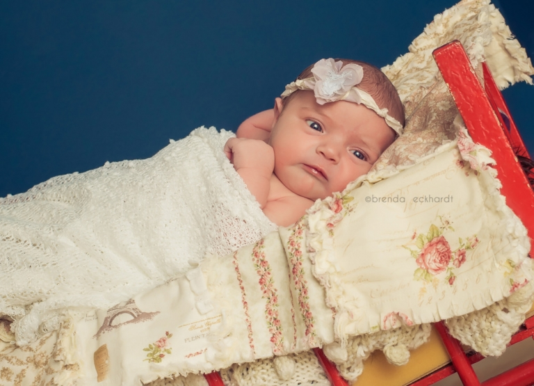 Newborn photographers madison wi