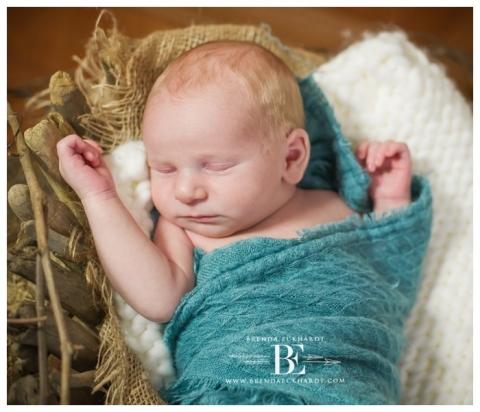 Madison newborn photography newborn photo madison wi newborn photos madison wi madison photographer